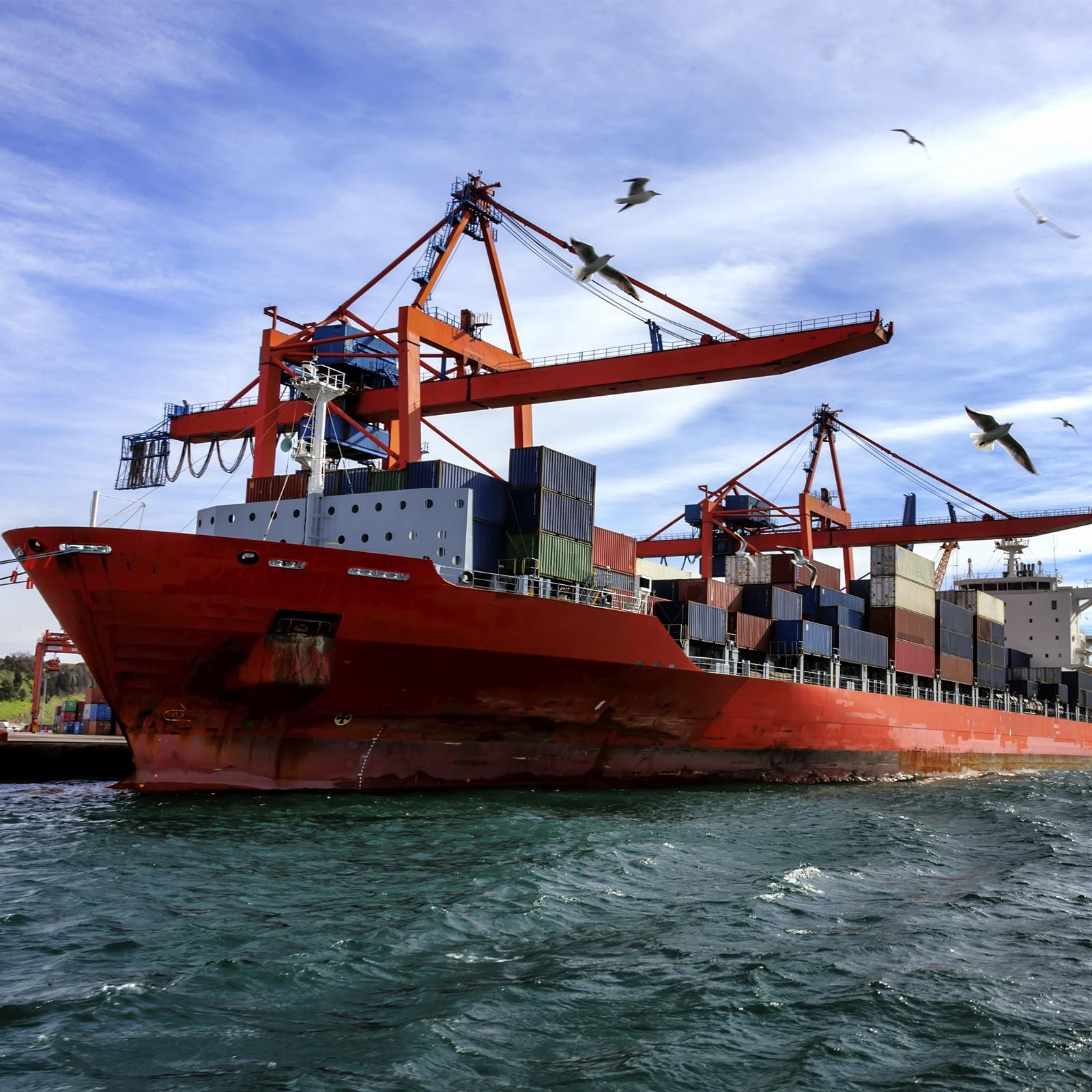 sector marítimo sellos mecánicos de calidad