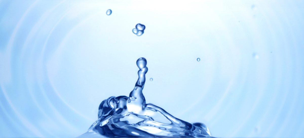 Agua que no has de beber, no la debes perder
